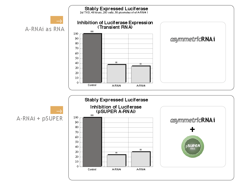 A-RNAi Luciferase Results